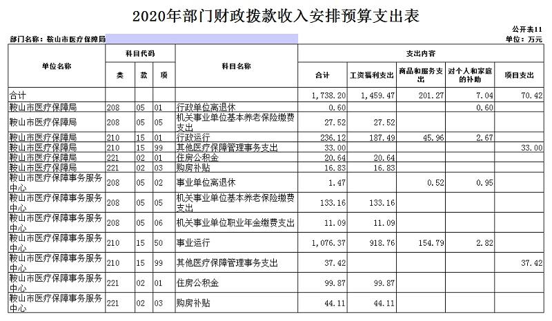"""医保局2020年部门预算和""""三公""""经费预算公开表 上报版_20201231092857_12.jpg"""